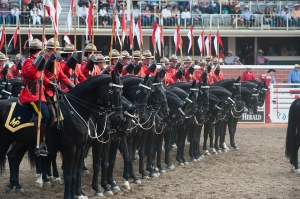 加拿大皇家騎警表演 Photo Credit: Shane Kuhn / Calgary Stampede