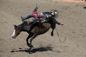 Photo Credit: Chris Bolin / Calgary Stampede