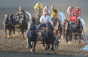 馬車比賽 Photo Credit: Mike Ridewood / Calgary Stampede