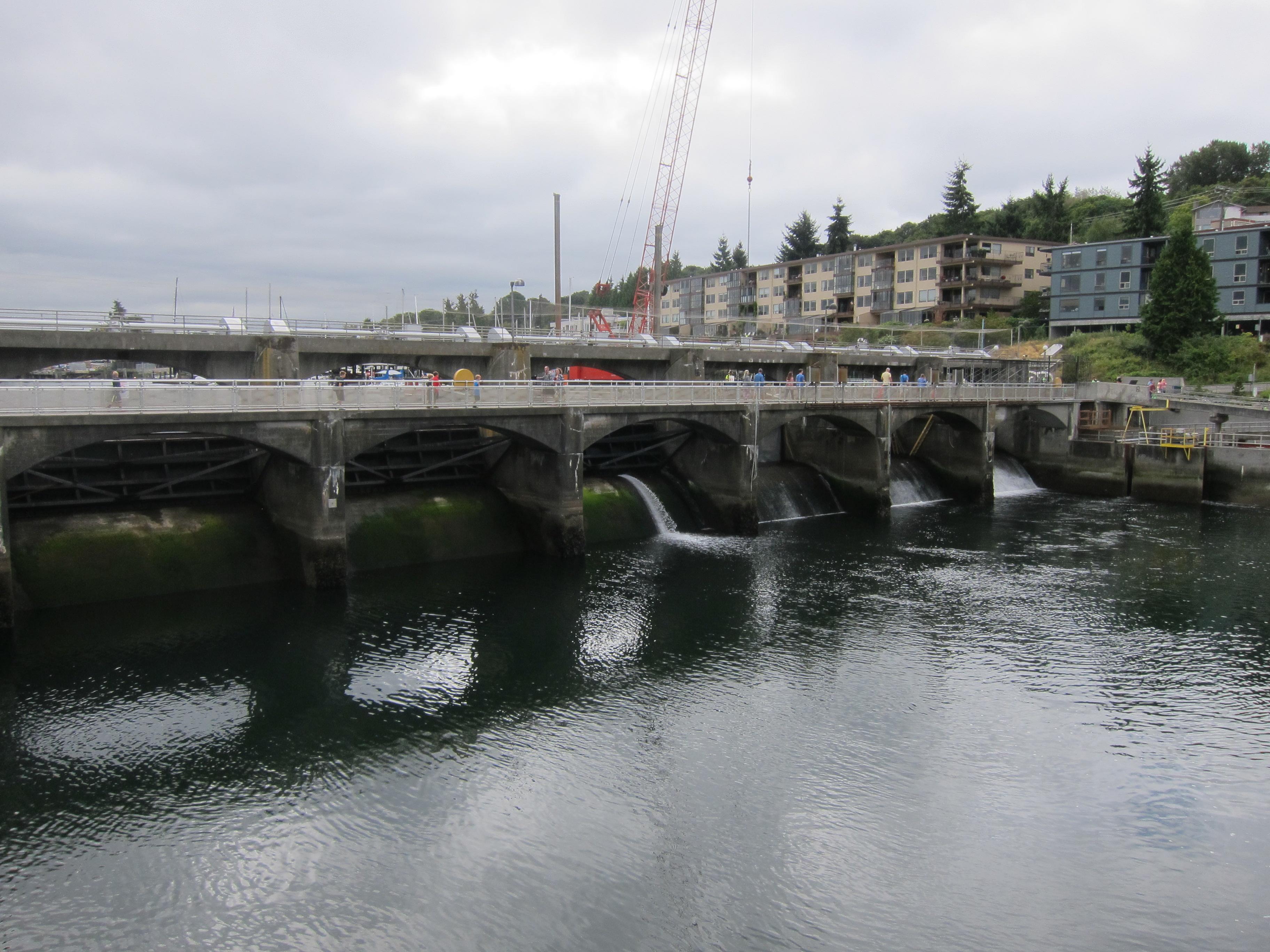 Seattle trip highlights ballard locks fremont troll for Ballard locks fish ladder